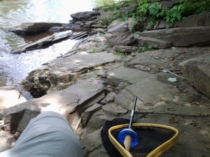 The tenkara angler and his net take a break. (photo taken 05 2013)