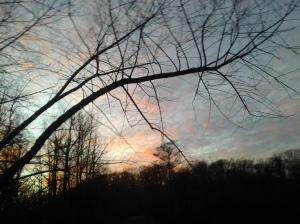 Sunset (12 29 2014)