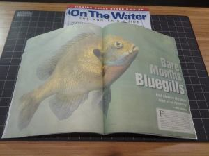 Bare Months Bluegills by ron P. swegman On the Water 03 2015