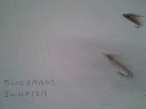 Swegman's Sunfish