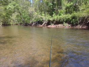 Dry Fly Fished Upstream (05 2016)